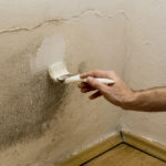 Can You Paint Drylok Over Mold?