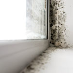 Can You Rent a Mold Fogger?