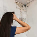 Does Mold Always Come Back?
