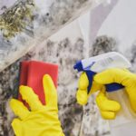 How Do You Get Rid of Mold and Damp On Walls?