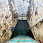 How Do You Get Rid of Mold in the Basement?