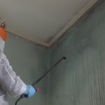 How Long Does It Take for Mold Remediation?