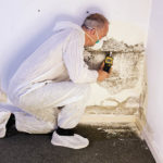 How Much Does It Cost To Get Your House Checked For Mold?