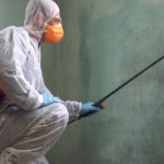 Is Mold Remediation Business Profitable?