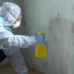 Is Mold Remediation Covered Under Homeowners Insurance?