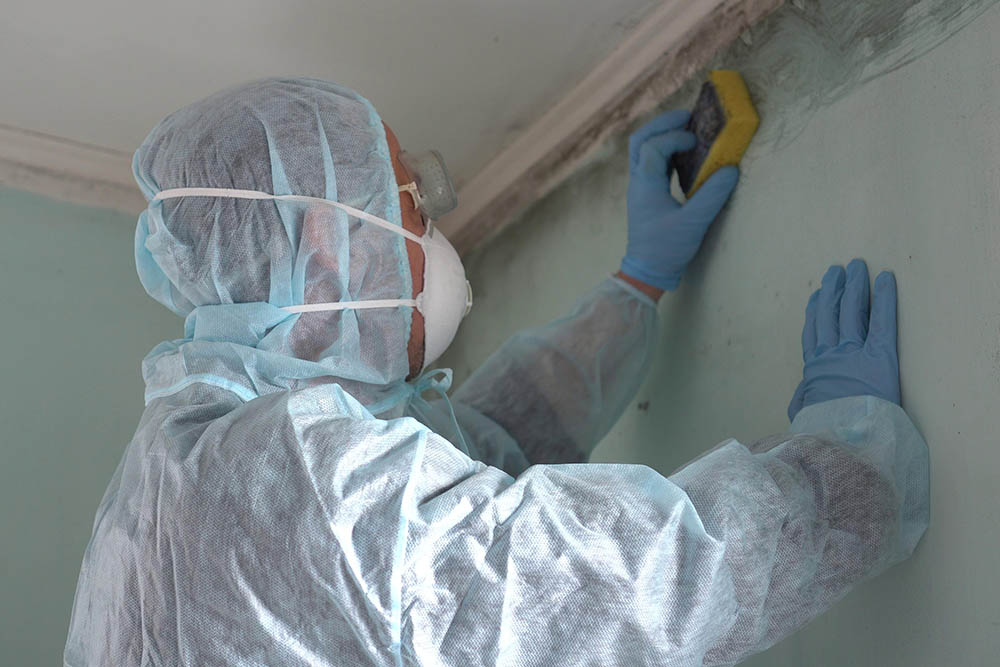 Is mold remediation tax deductible