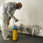 What Chemicals Are Used In Mold Remediation?