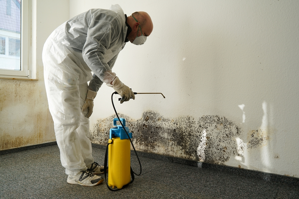 What chemicals are used in mold remediation
