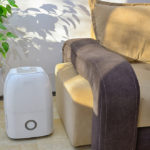Will Dehumidifiers Get Rid of Mold?