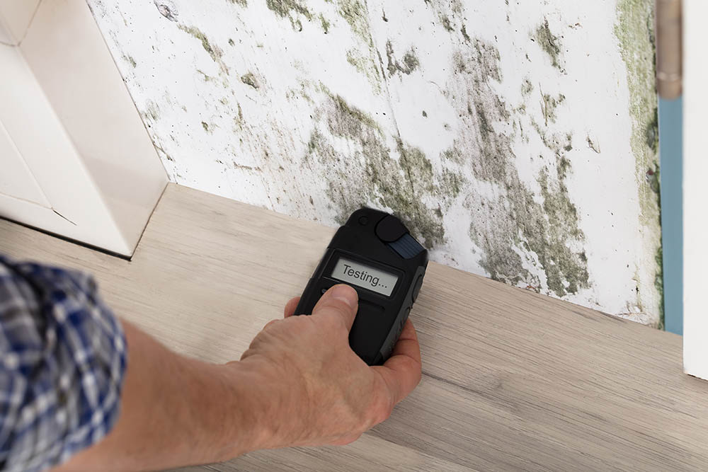 Can a general contracter do mold remediation