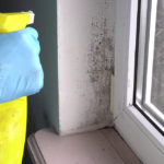 Is Mold Remediation Tax-Deductible?